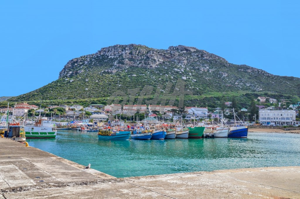 Kalk Bay harbour on a sunny day, South Africa