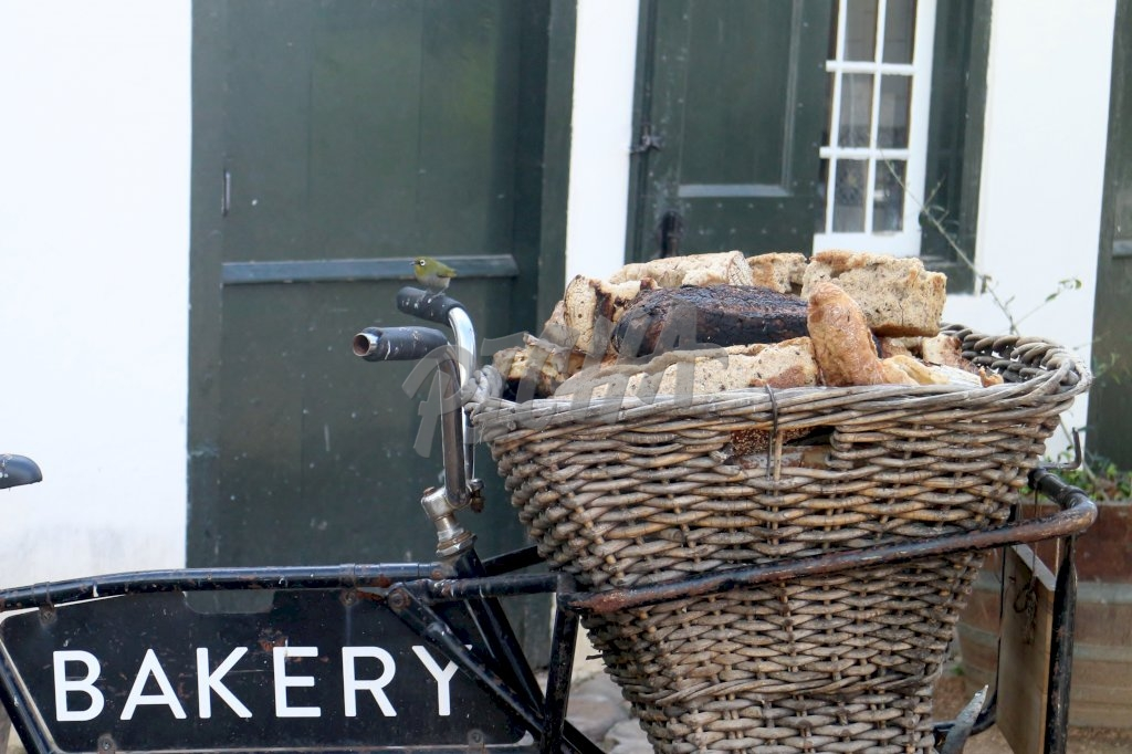 Bakers bicycle