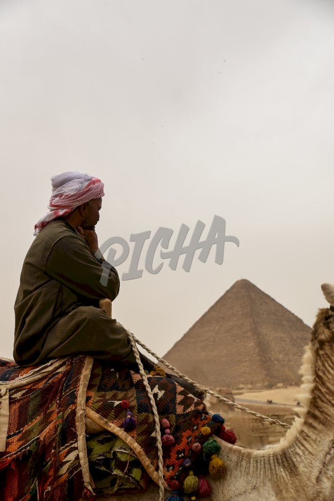 Life by the pyramids