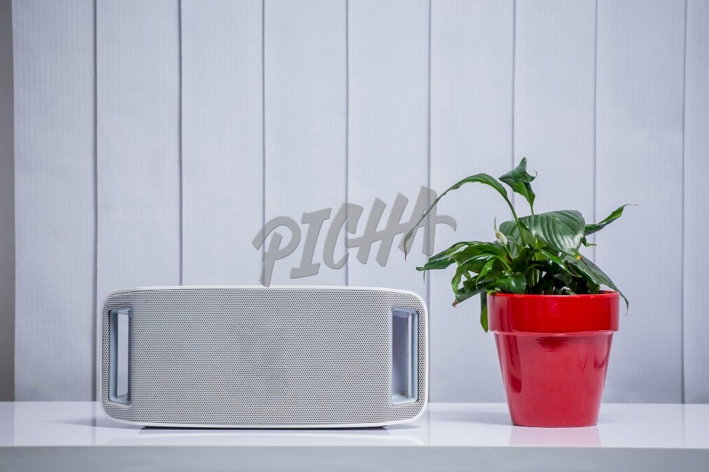 Plant and speaker