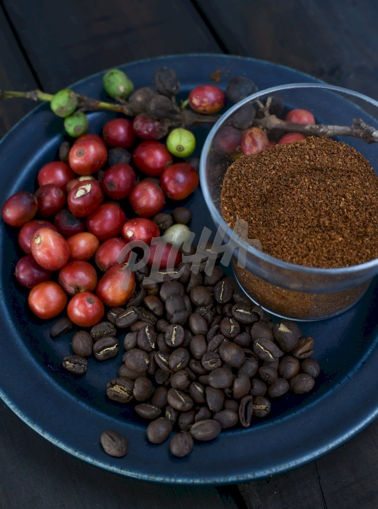 Coffee in different processing stage