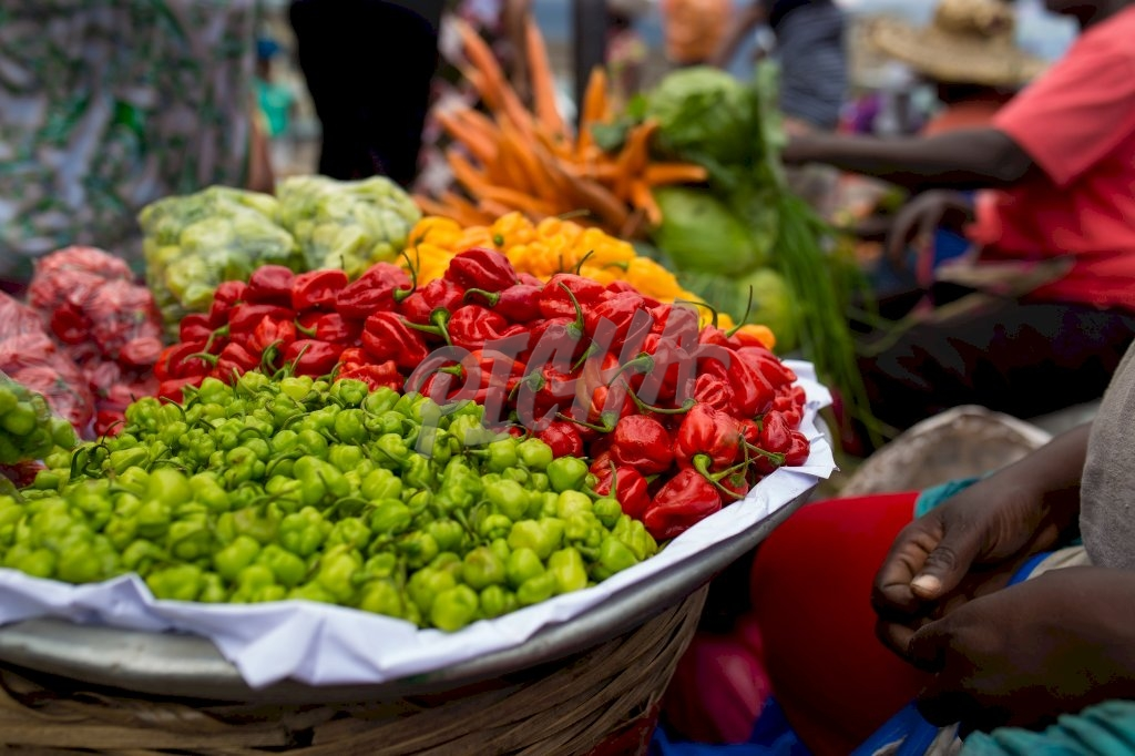 Selection of hot peppers from the market
