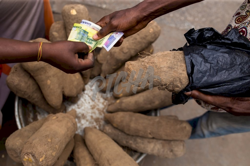Yam tubers from the market
