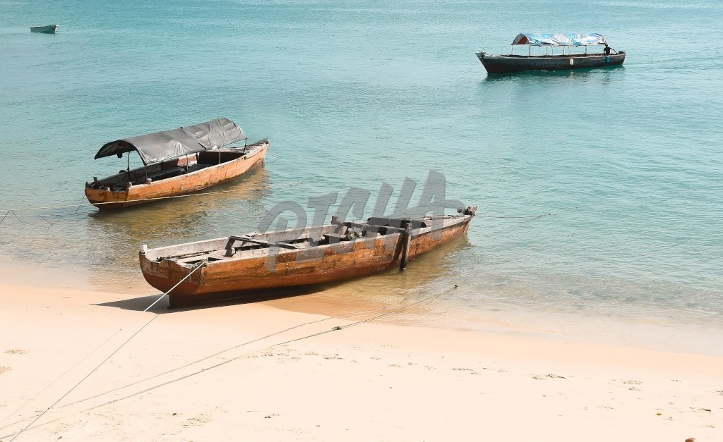 anchored boats sit empty by the shore