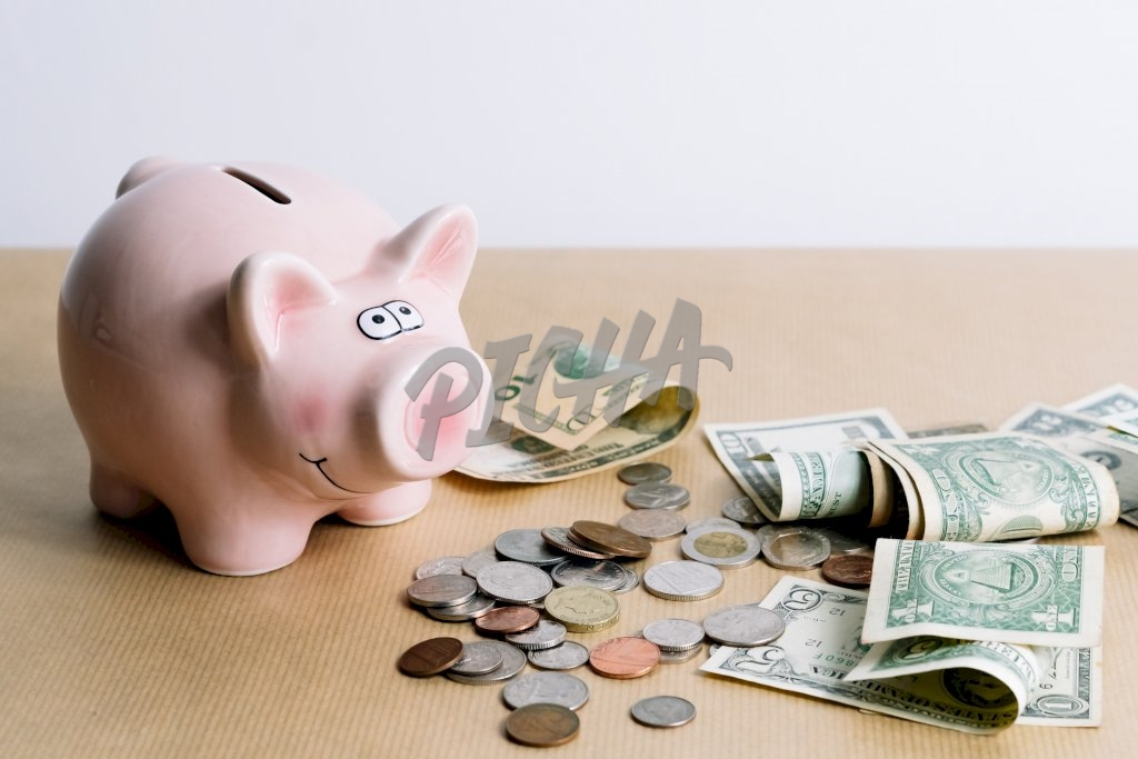 Savings with the piggy bank