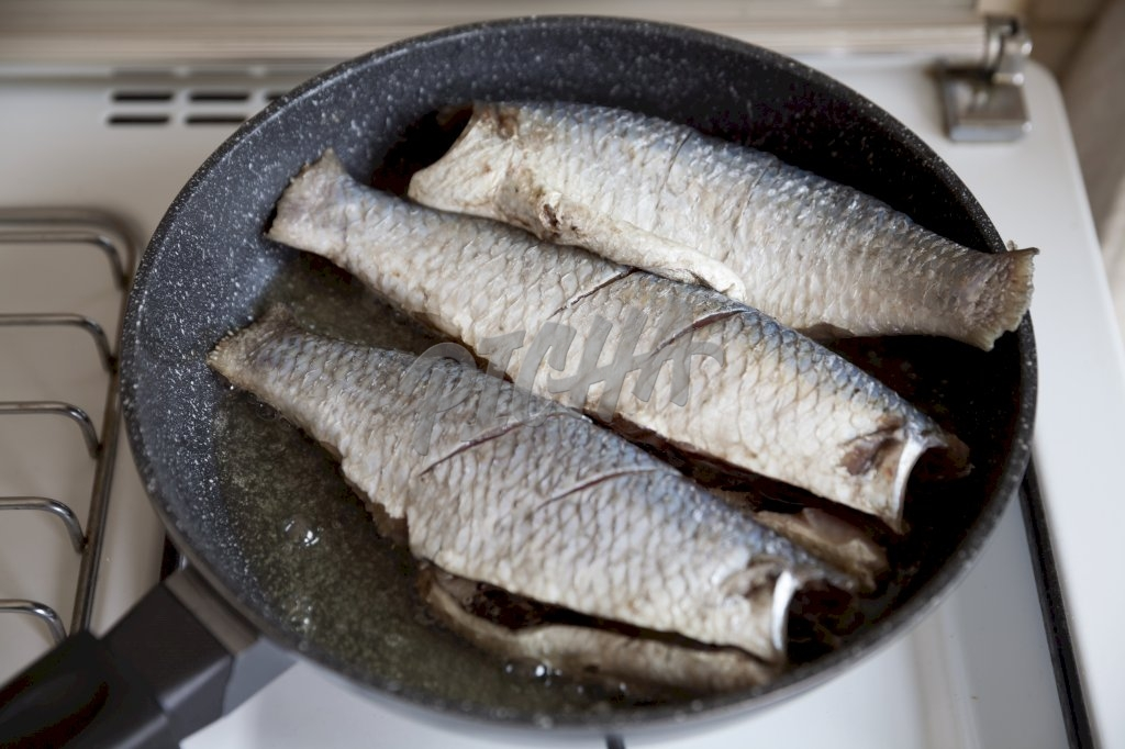Fish on a pan