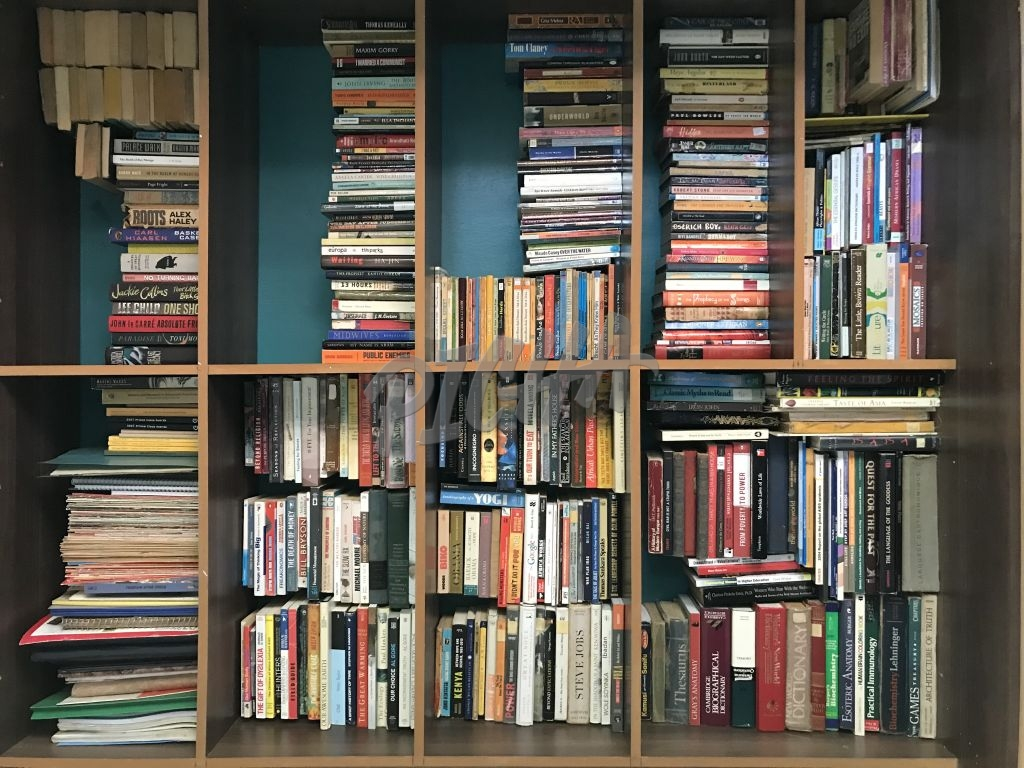 shelf full of books