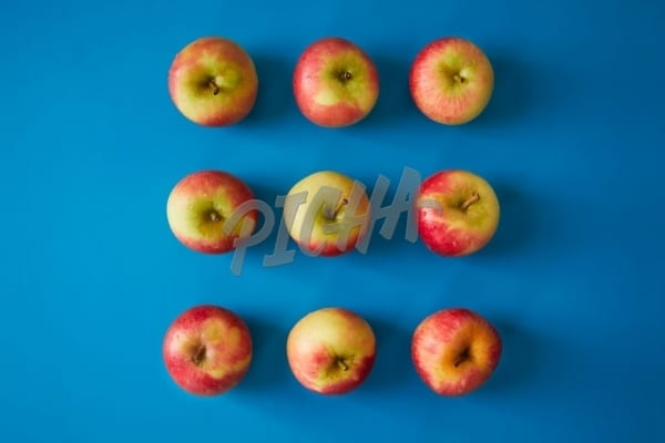 Apples in a grid