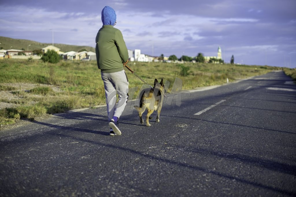 Young boy taking his dog for a walk