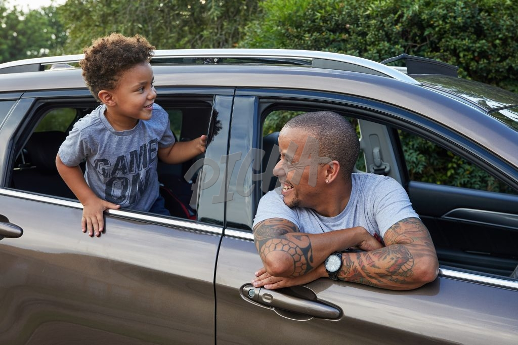Father and son hanging out of car