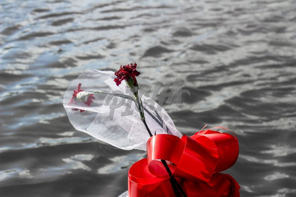 Rose flower gift by the pier