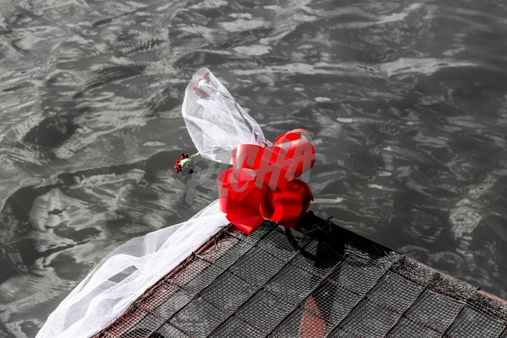 Red rose on a pier