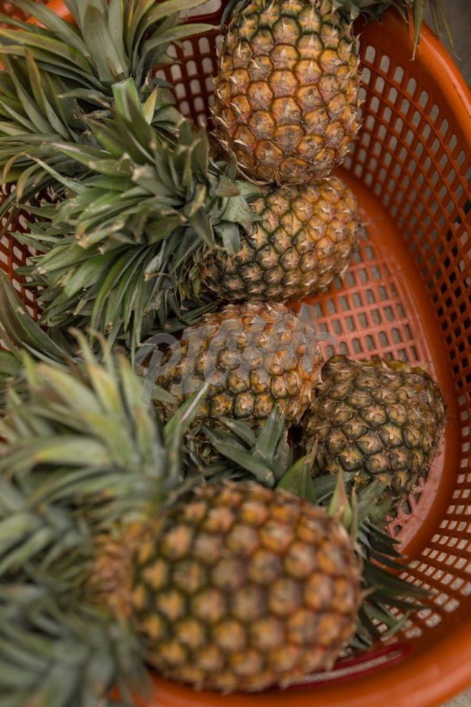 Basket of pineapples