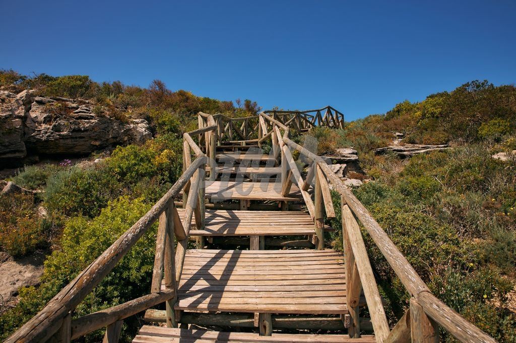 Wooden stairs and blue skies