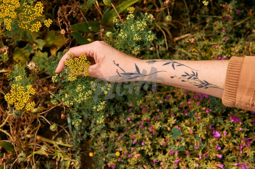 Hand with tattoo holding flower