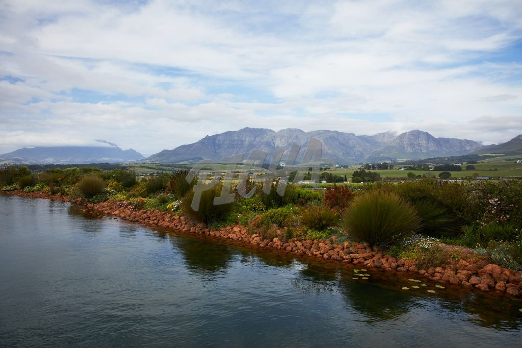 Beautiful Stellenbosch landscape