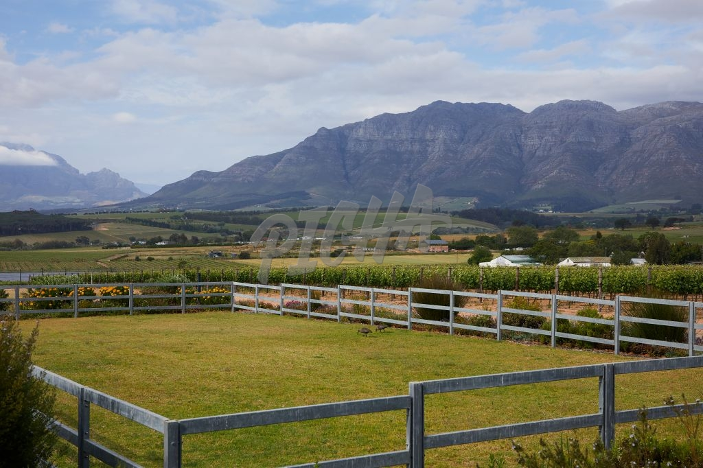 Desserted Stellenbosch land due to Covid