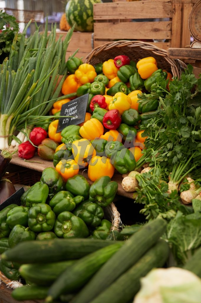 Assortment of vegetables on display at a market