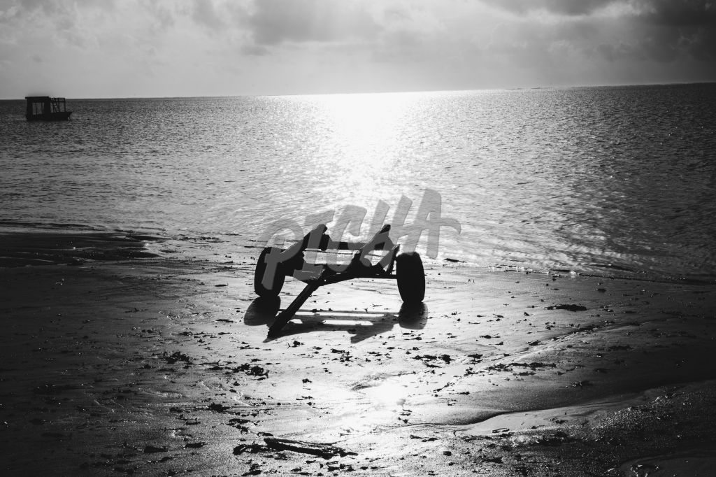 Black and white photo of sunset at the beach