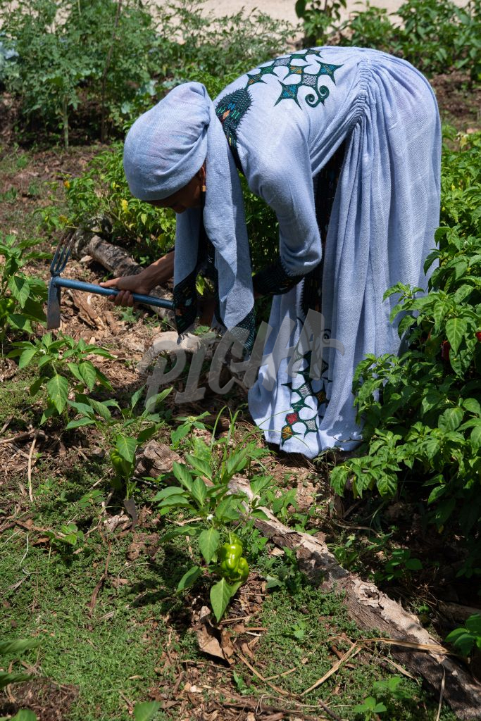 Woman gardening with a fork hoe