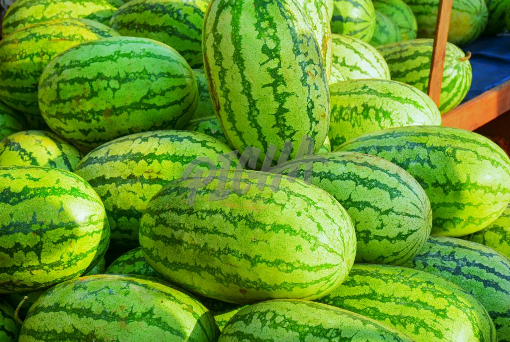 stacked watermelon